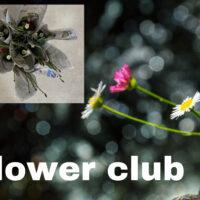 Flowor club